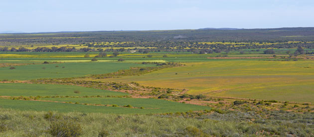 Pofadder, in the Northern Cape, South Africa